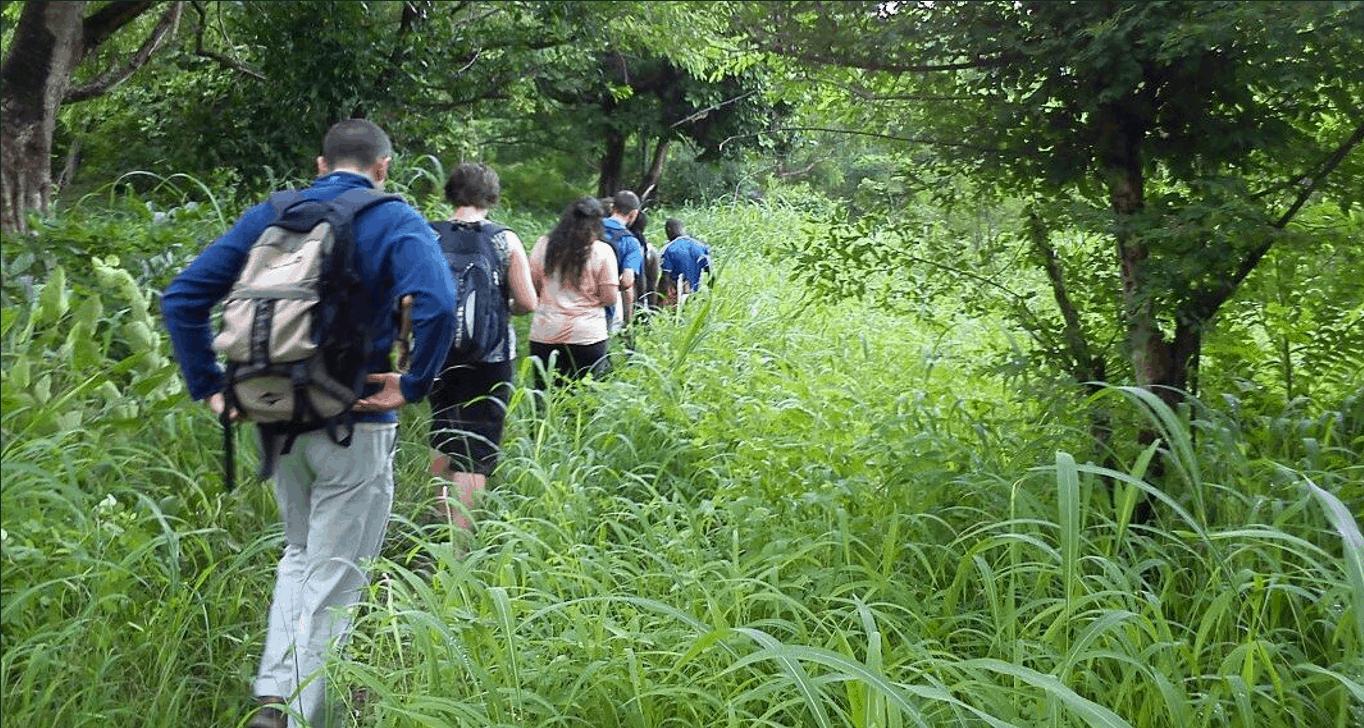 people walking in forest in ghana